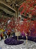 20110411&爭艷館~台灣花卉展:P1100931.JPG