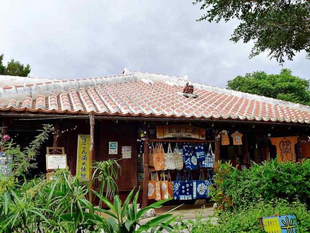 P2490210.JPG.jpg - 20171231日本沖繩文化世界王國(王國村)