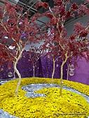 20110411&爭艷館~台灣花卉展:P1100932.JPG