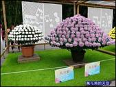 20191204台北士林官邸菊展:萬花筒10士林官邸菊展.jpg
