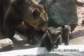 20110713北海道旭川市旭山動物園:110511a.jpg