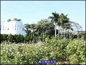 20191110台北新生公園台北玫瑰園秋季玫瑰展:萬花筒9玫瑰.jpg