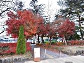 20171113日本長野輕井澤王子購物廣場(Karuizawa Prince Plaza):201711輕井澤11.jpg