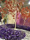 20110411&爭艷館~台灣花卉展:P1100934.JPG