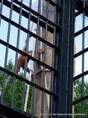20110713北海道旭川市旭山動物園:P1170105.JPG