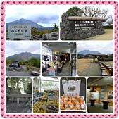 20150207日本鹿兒島櫻島火山一日遊:PhotoFancie2015_02_21_23_50_25.jpeg