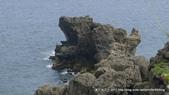 20110523社頭自然公園:P1130365.jpg