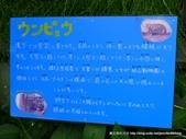 20110713北海道旭川市旭山動物園:P1170492.JPG