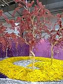 20110411&爭艷館~台灣花卉展:P1100935.JPG