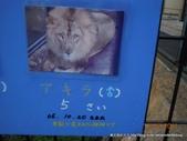 20110713北海道旭川市旭山動物園:DSCN0032.jpg