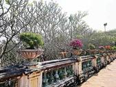 20180214泰國七岩拷汪宮(Phra Nakhon Khiri Palace):20180214泰國一53.jpg