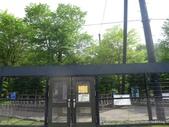 20110713北海道旭川市旭山動物園:P1170152.JPG