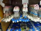 20110713北海道旭川市旭山動物園:P1170651.JPG