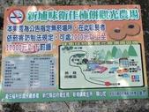 20171025新竹新埔味衛佳杮餅觀光農場:201710新竹1031.jpg