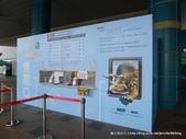 20120504奇幻不思議3D視覺展:P1400111.JPG