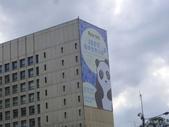 20140228熊貓世界之旅台北市府站:P1810056.JPG