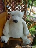 20110713北海道旭川市旭山動物園:P1170156.JPG