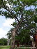 20110701台南孔廟:P1150373.JPG
