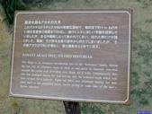 20180102日本沖繩首里城公園:20180102沖繩1561.jpg