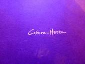 20121118台場維納斯城堡Cobara Hetta晚餐:P1550946.JPG