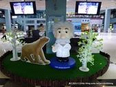 20120504奇幻不思議3D視覺展:P1400114.JPG