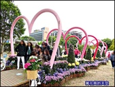 20191204台北士林官邸菊展:萬花筒8士林官邸菊展.jpg