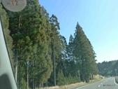 20150208日本鹿兒島宮崎第三天:P1960131.JPG