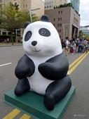 20140228熊貓世界之旅台北市府站:P1810063.JPG