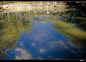 福壽山天池:DSC_4392.jpg