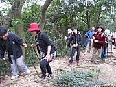 2010-12-10-飛鳳山:飛鳳山_016.jpg