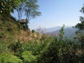 2011-10-29-大山背休閒農區:大山背休閒農區_072.JPG