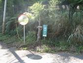2011-10-29-大山背休閒農區:大山背休閒農區_073.JPG