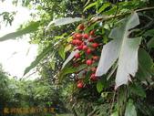 2011-10-12-澳底至基隆海線之旅:2011-10-12-北部濱海行_024.jpg