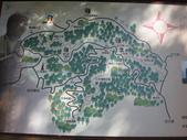 2011-10-29-大山背休閒農區:大山背休閒農區_005.JPG