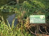 2011-10-27-照門-新埔-九芎湖埤塘窩:照門-新埔-九芎湖埤塘窩_073.jpg