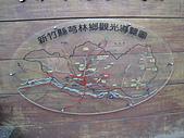 2010-12-10-飛鳳山:飛鳳山_001.jpg