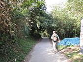 2010-12-10-飛鳳山:飛鳳山_005.jpg