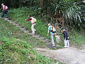 2010-12-10-飛鳳山:飛鳳山_006.jpg