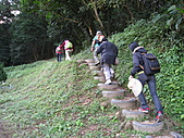 2010-12-10-飛鳳山:飛鳳山_007.jpg