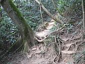 2010-12-10-飛鳳山:飛鳳山_011.jpg