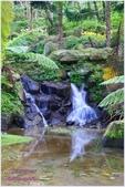 2012-桃源仙谷春遊記:P1500308.JPG