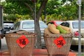 2015 苗栗遊.汶水老街:DSC_7080.JPG