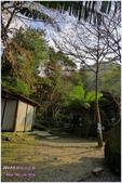 2012-桃源仙谷春遊記:P1500277.JPG