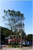 2012-桃源仙谷春遊記:P1500144.JPG