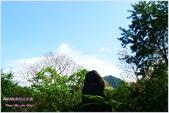 2012-桃源仙谷春遊記:P1500148.JPG