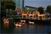 2015 大陸行.上海展場與酒店:DSC_3653.JPG