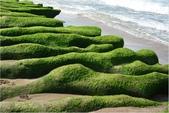 2015 老梅綠石槽:DSC_3019.JPG