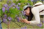 2015 紫藤咖啡園:DSC_2479-1.jpg