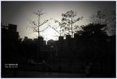2012-板橋音樂公園隨拍:P1510952.JPG