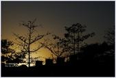2012-板橋音樂公園隨拍:P1510960.JPG